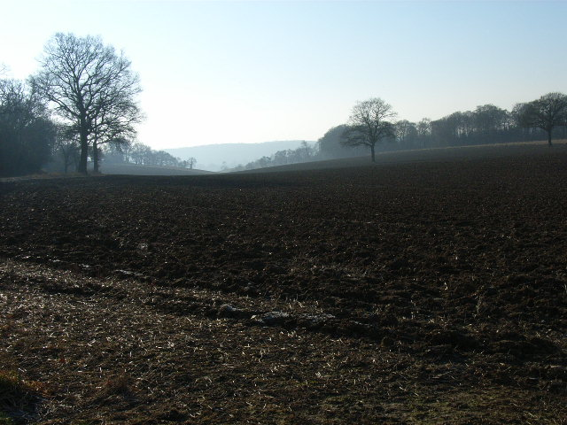 Arable farmland at Hollandridge Farm