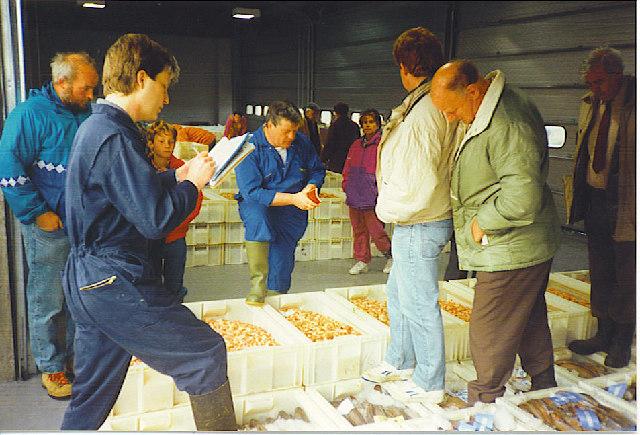 Auctioning Fish at Buckie