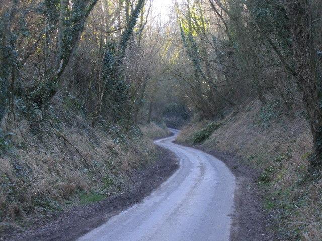View up Long Hollow towards Salisbury Plain, Tinhead
