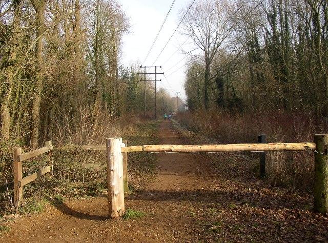 Disused Railway looking east, Ash, Surrey