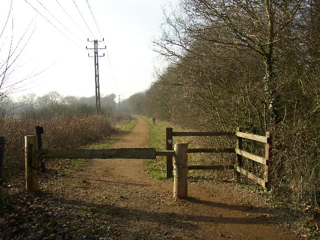 Disused Railway looking west, Ash, Surrey