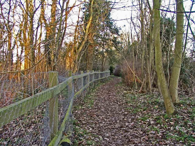 Broad Green Wood, off Bayford Lane, Hertfordshire