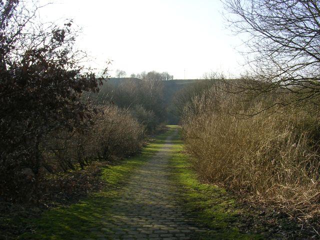 Ladyshore Road