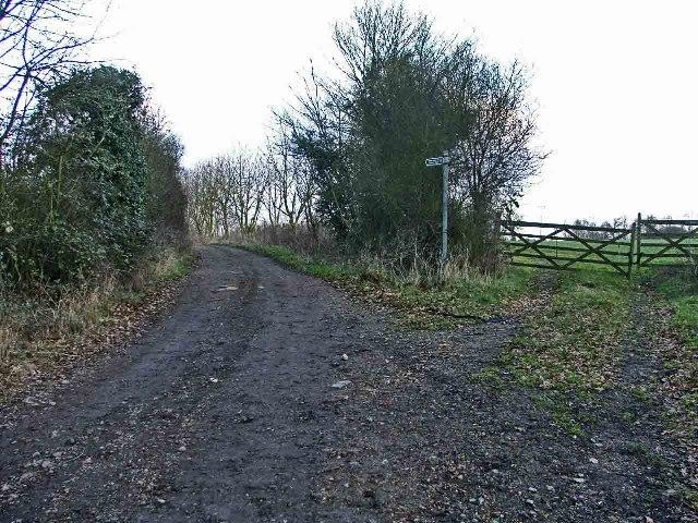 Track leading to Celtic Harmony Camp, Brickendon