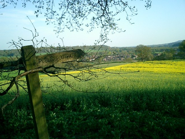 View from Chantries to Hornhatch, Chilworth