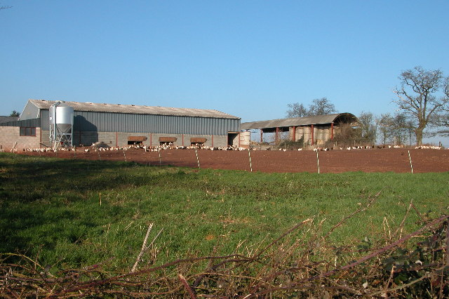 Upper Field Farm, near Llancloudy
