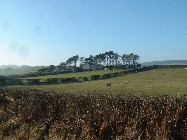 Cae Segwen Farm, near Clocaenog