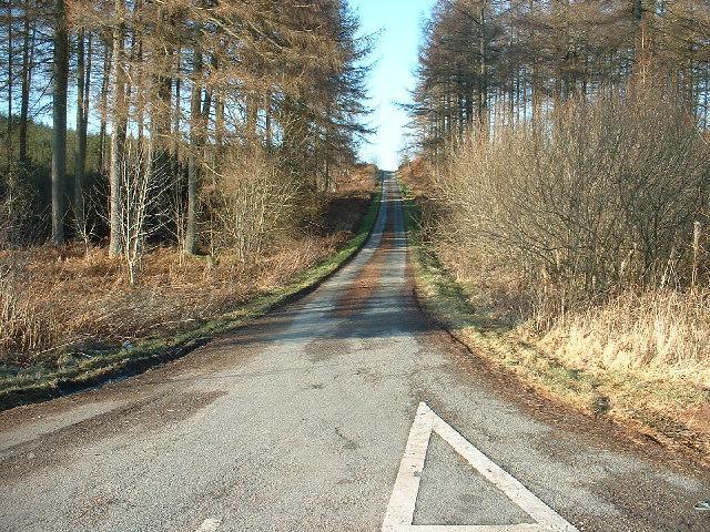 Minor road in Clocaenog Forest