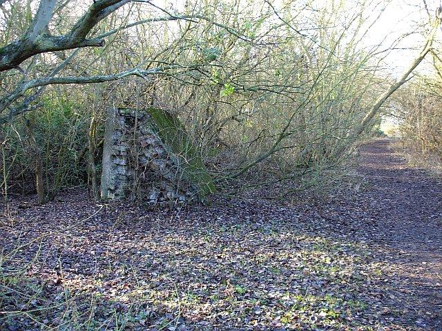 Old brickworks, Lower Halstow