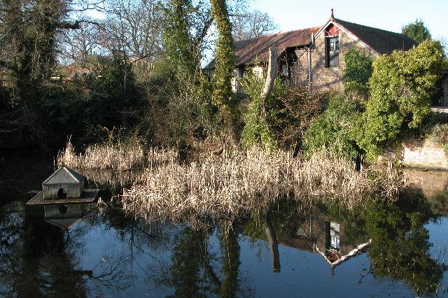 Pond at Kynaston Farm