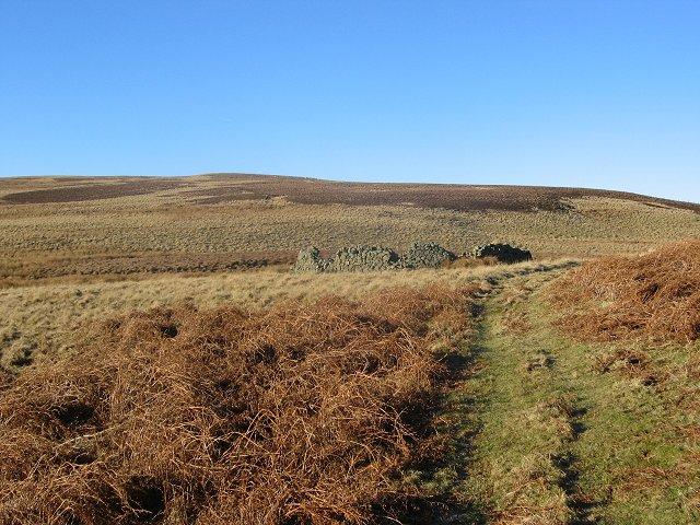 Sheepfank, Long Cleuch