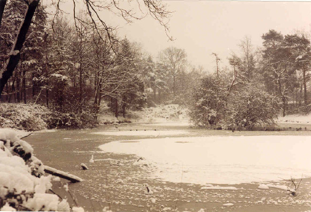 Oakwood Pond, Harlow in Winter