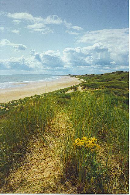 The Sands of Forvie.
