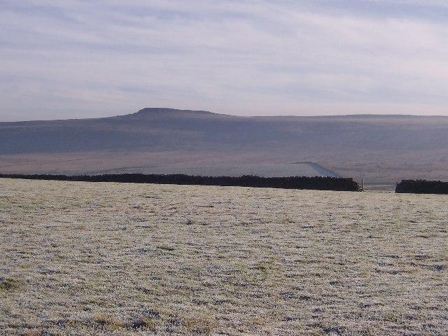 East Scrafton Moor
