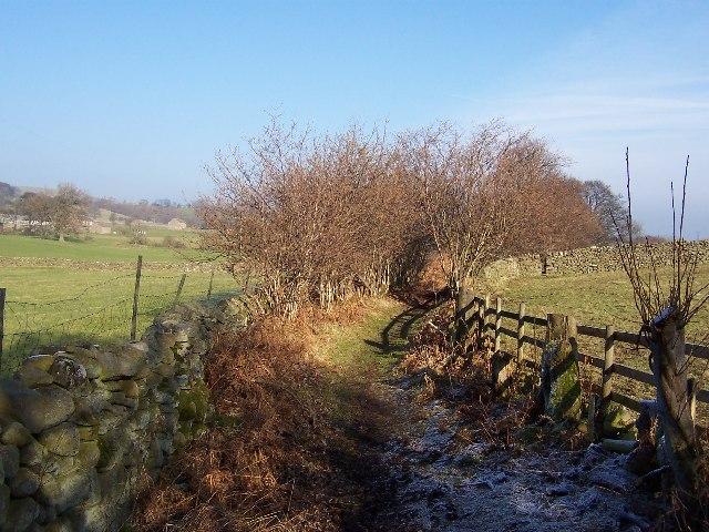 Turnbeck Lane