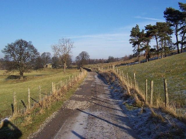 Access Track near Arkleside