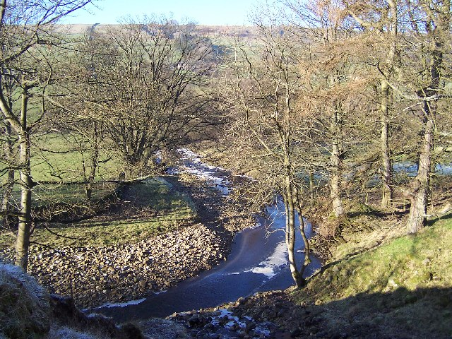 River Cover, near Braidley