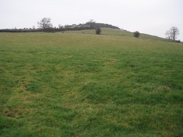 Socombe Hill.