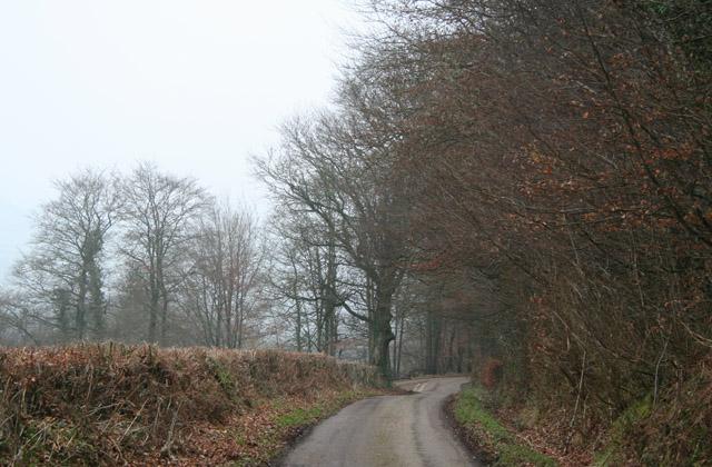 Hemyock: lane to Browning's
