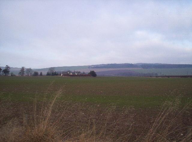 Field and Cotton Farm