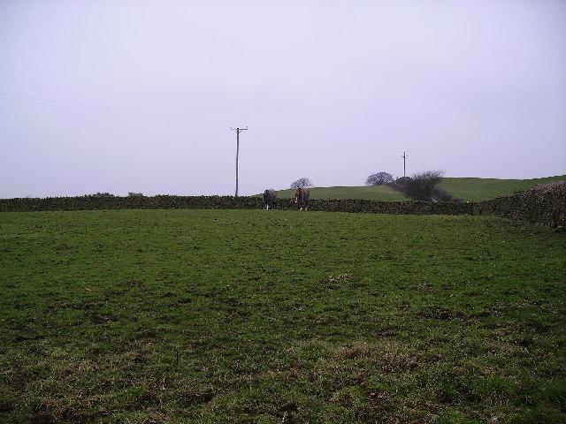 Farmland near Halfpenny