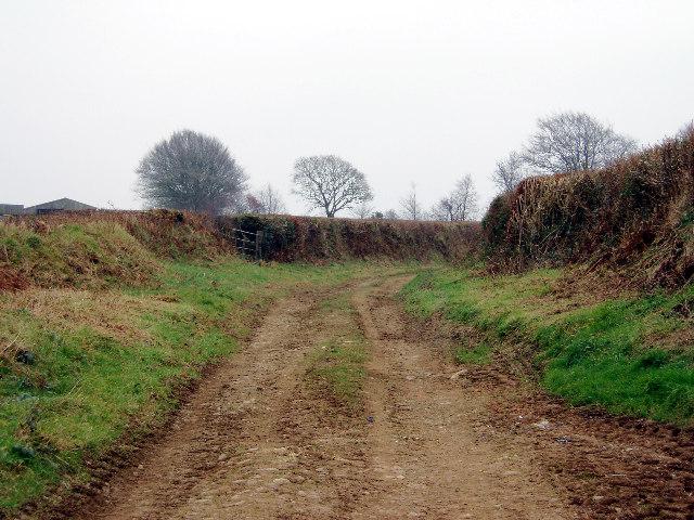Farm lane near Amytree