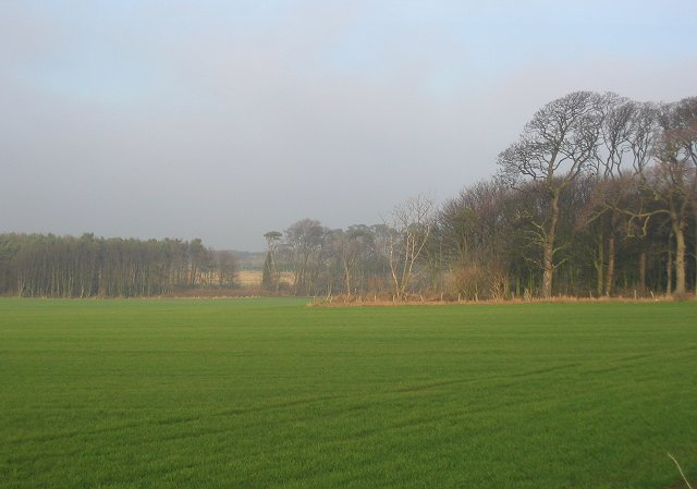 Farmland outside Dirleton.