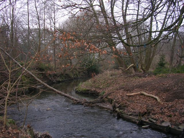 Micker Brook