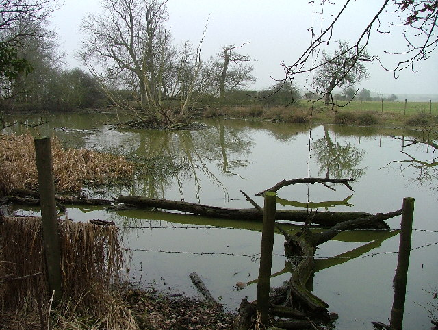 Pond at Redcoats Farm