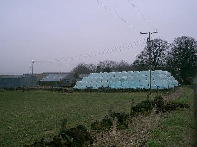 Carden Farm