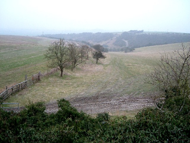 Looking towards Coombe Bottom from near Gallows Hill