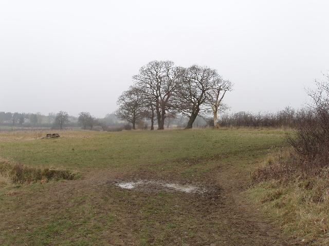Merry Hill, Bushey