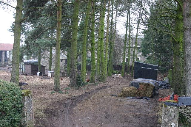 Farm at Grassgarth