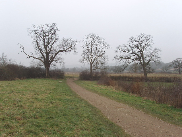 Merry Hill Greenway, Bushey