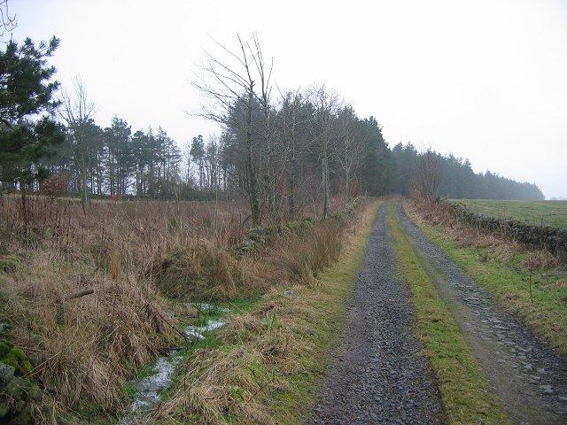 Farm road, Knock Hill.