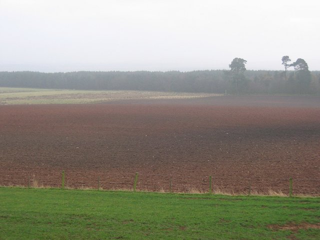Ploughed field, Huntlywood.