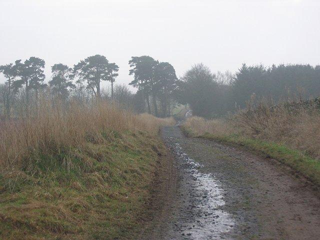 Farm road, Huntlywood.
