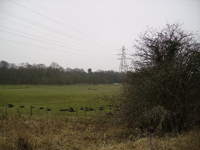 Pylon with Molehills