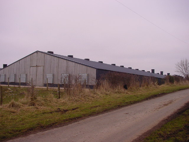 New Farm Shed