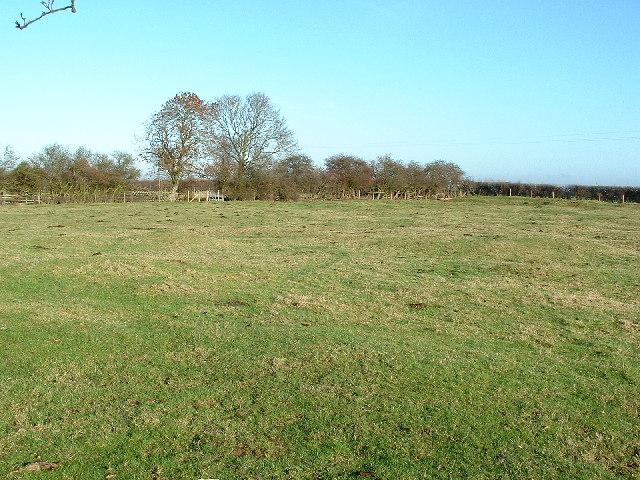 Quarry debitage in a field near Dyke