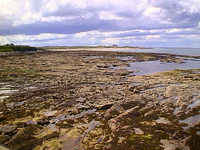 Seahouses and Bamburgh Castle