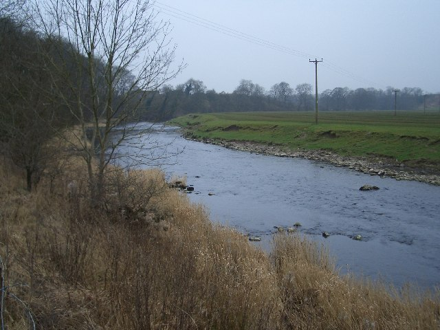 The River Ribble just south of Clitheroe