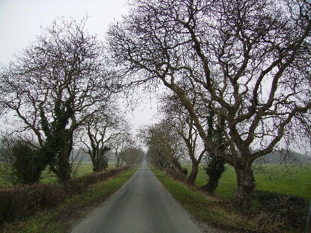 Road to Old Park