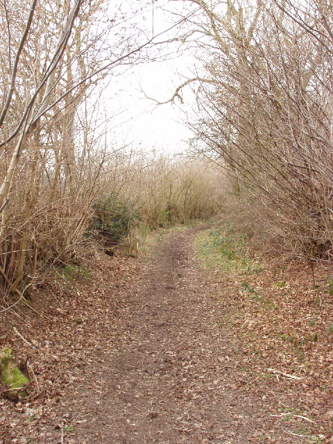 Bridleway, Green Lane from White End to Chesham