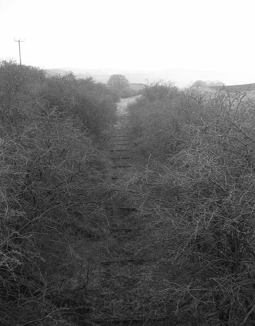 Trackbed.