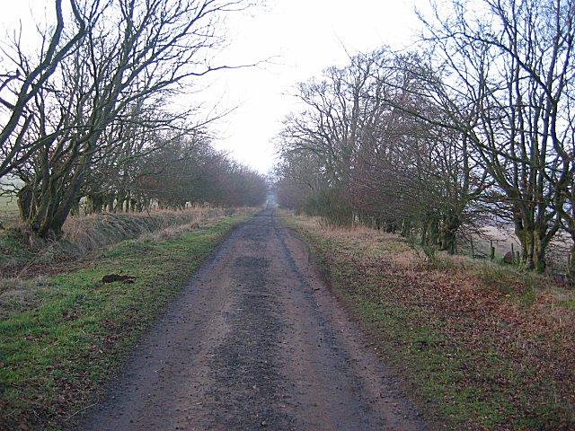 Birkenside Hill
