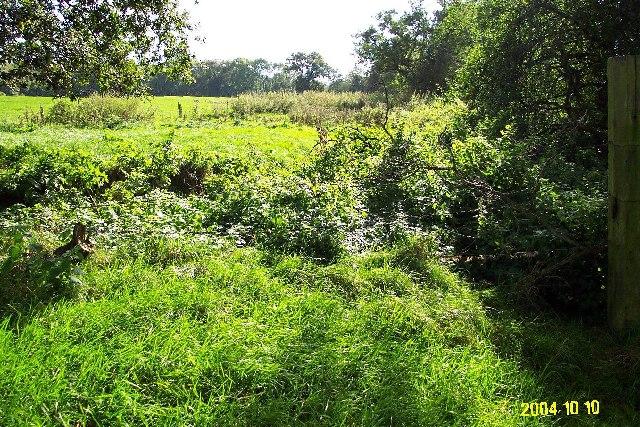Cheshire Plain - farmland