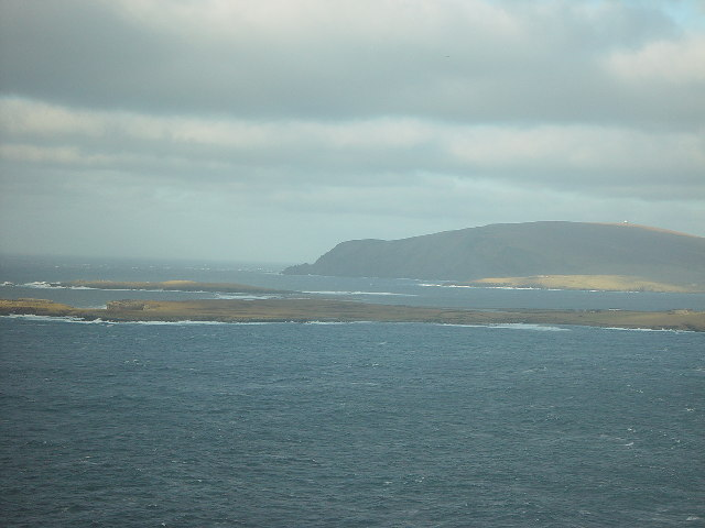 Lady's Holm and Scat Ness, Shetland