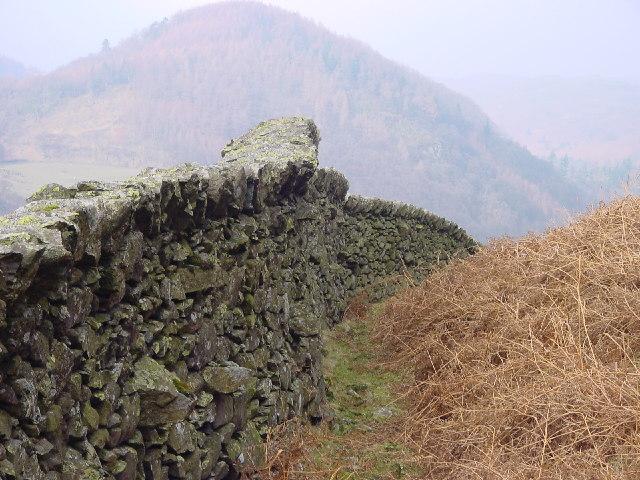 Anti-Wolf Snakey Wall