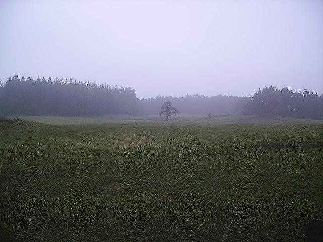 Field at Haverthwaite